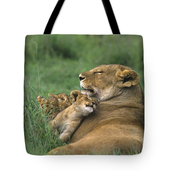 Tote Bag featuring the photograph African Lions Mother And Cubs Tanzania by Dave Welling