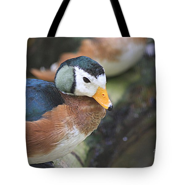 Tote Bag featuring the photograph African Pygmy Goose by Jerry Bunger