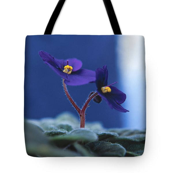 Tote Bag featuring the photograph African Violet by Lana Enderle