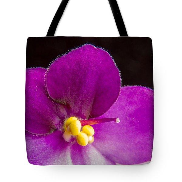 African Violet Macro Tote Bag by Darleen Stry