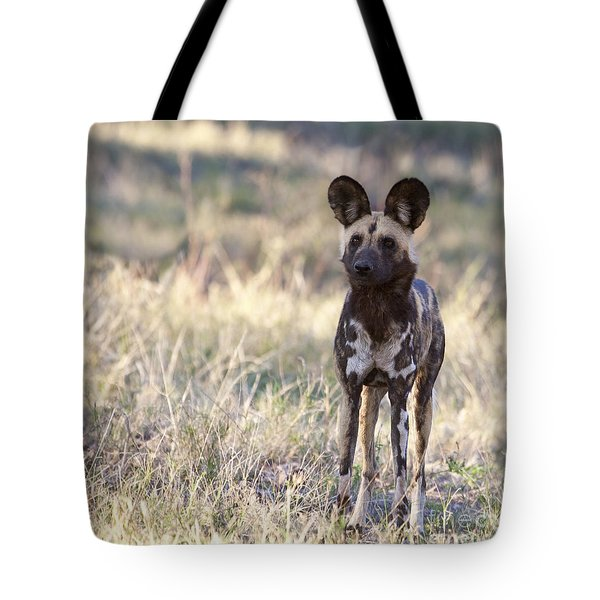 African Wild Dog  Lycaon Pictus Tote Bag