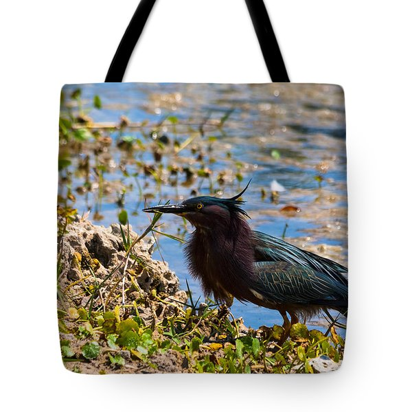 After Fishing Tote Bag by Ed Gleichman