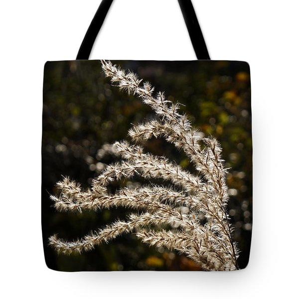 After Summer Tote Bag by Inge Riis McDonald