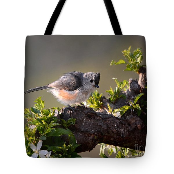 After The Bath Tote Bag by Nava Thompson