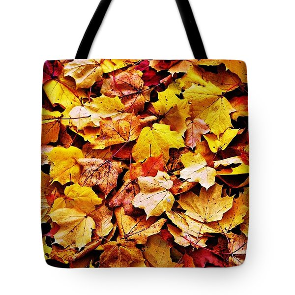 Tote Bag featuring the photograph After The Fall by Daniel Thompson