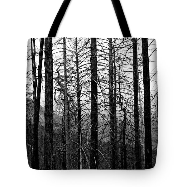 After The Fire Tote Bag by Joe Kozlowski