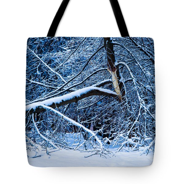 After The Icy Rain - Featured 3 Tote Bag by Alexander Senin