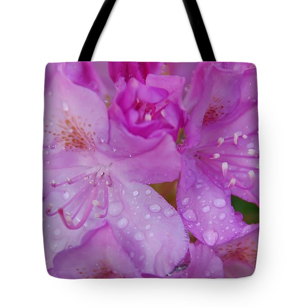 After The Rain Tote Bag by Aimee L Maher Photography and Art Visit ALMGallerydotcom