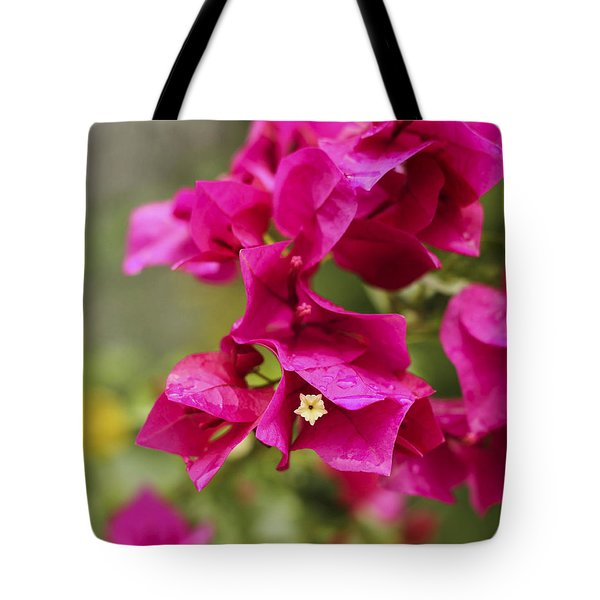 Tote Bag featuring the photograph After The Rain by Amber Kresge