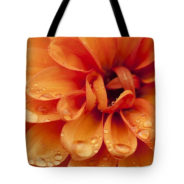 After The Rain Tote Bag by Anne Gilbert