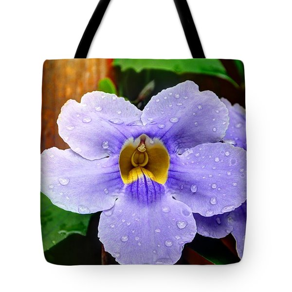 After The Rain Tote Bag by Bob Hislop