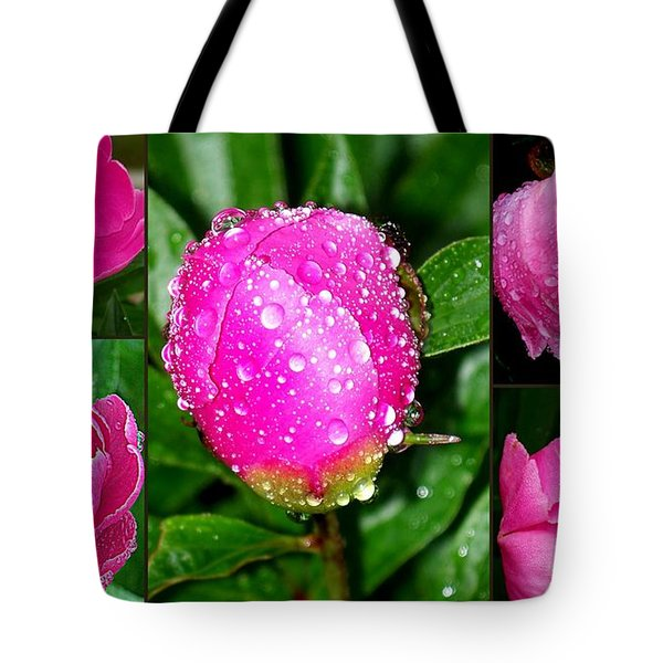 After The Rain Tote Bag by Eunice Miller