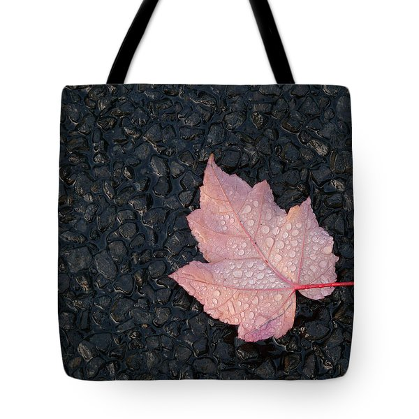 After The Rain Tote Bag by Evelyn Tambour