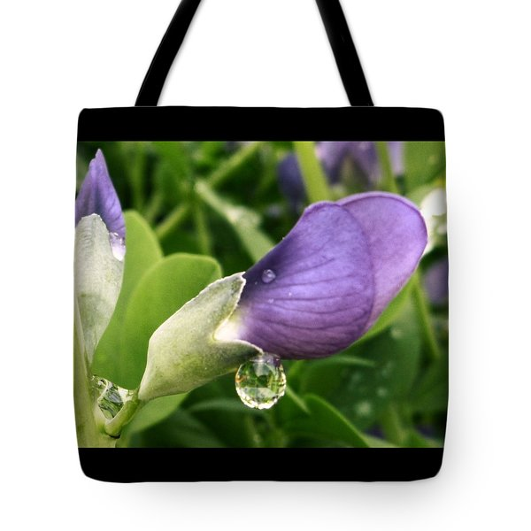 Tote Bag featuring the photograph After The Rain by Gigi Dequanne
