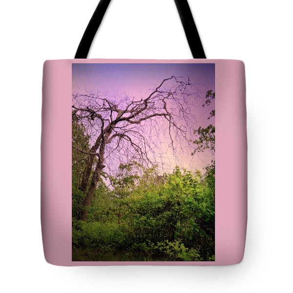 Tote Bag featuring the photograph After The Rain by Jim Whalen