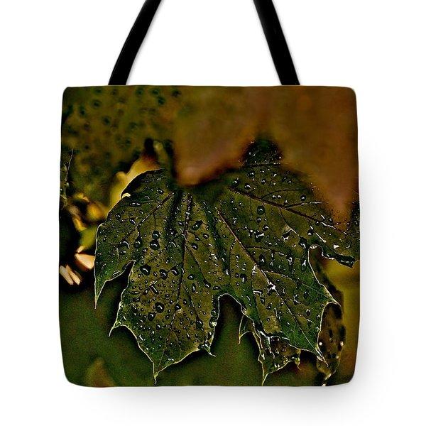 After The Rain Tote Bag by Joe  Burns