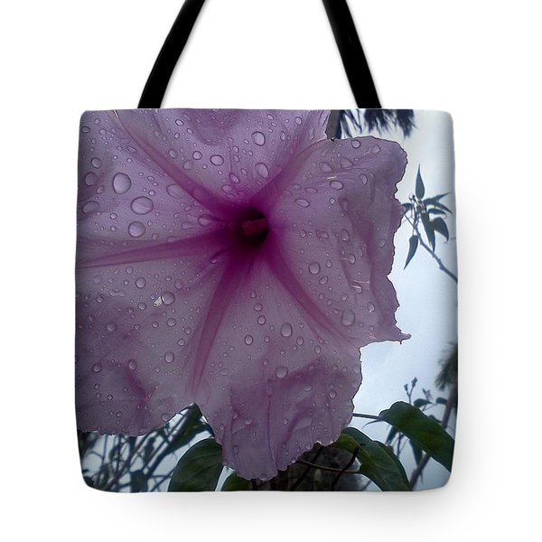 After The Rain Tote Bag by K Simmons Luna