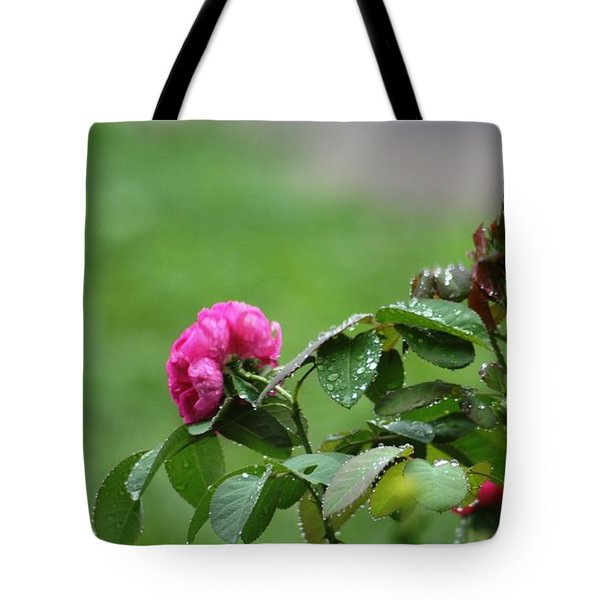 After The Rain Tote Bag by Stacy C Bottoms