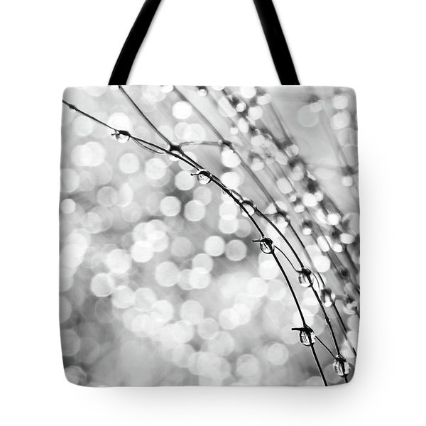 After The Rain Tote Bag by Theresa Tahara