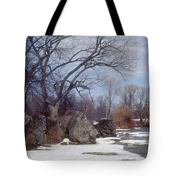 After The Snow Tote Bag by Darleen Stry