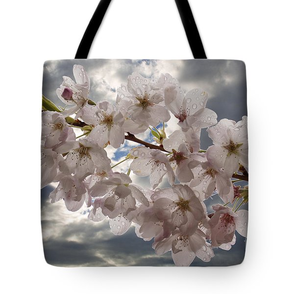 After The Spring Shower Tote Bag