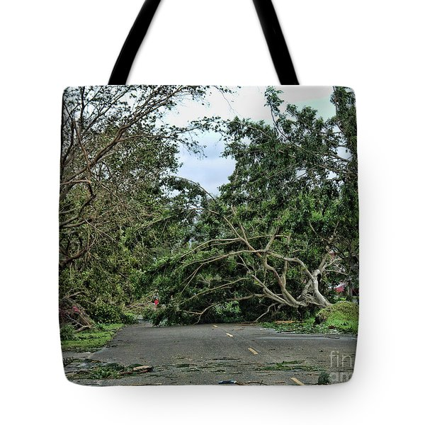 After The Storm Tote Bag by Anne Rodkin