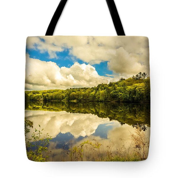 After The Storm Tote Bag by Sherman Perry