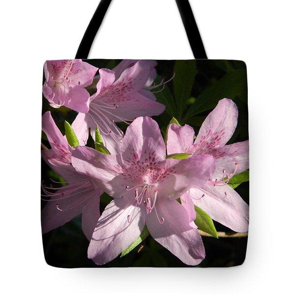 Afternoon Azaleas Tote Bag by Nancy Spirakus