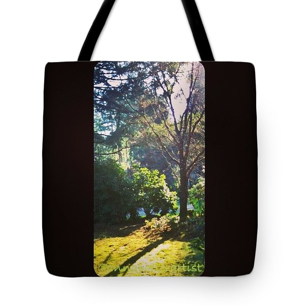Afternoon Light - January 1, 2013 A Tote Bag