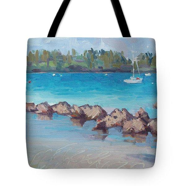 Afternoon Light Tote Bag by Dianne Panarelli Miller
