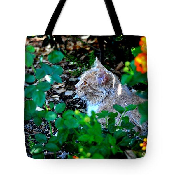 Tote Bag featuring the photograph Afternoon Nap Interrupted by Susan Wiedmann