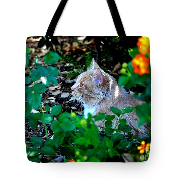 Afternoon Nap Interrupted Tote Bag