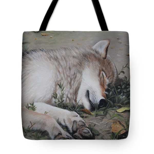 Tote Bag featuring the painting Afternoon Nap by Tammy Taylor