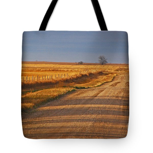 Afternoon Shadows Tote Bag by Mary Carol Story