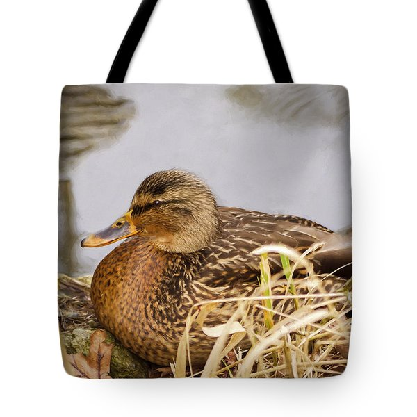 Tote Bag featuring the photograph Afternoon Siesta by Jordan Blackstone