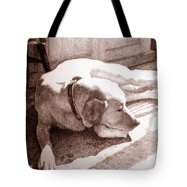 Afternoon Sun Tote Bag by Lorraine Zaloom