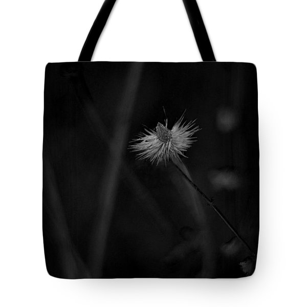Tote Bag featuring the photograph Afterword by Rebecca Sherman