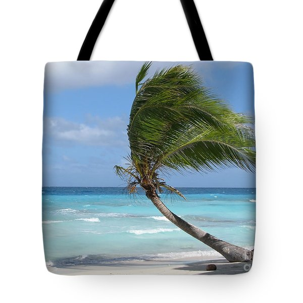 Against The Winds Tote Bag