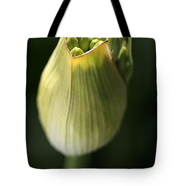 Agapanthus In The Daylight Tote Bag by Joy Watson