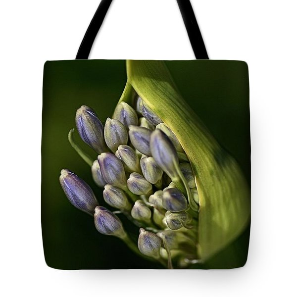 Tote Bag featuring the photograph Agapanthus by Joy Watson