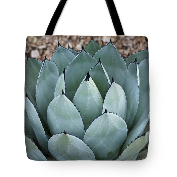 Tote Bag featuring the photograph Agave by Lana Enderle