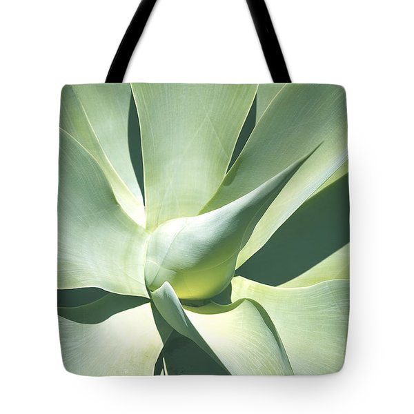 Tote Bag featuring the photograph Agave Plant 1 by Richard J Thompson