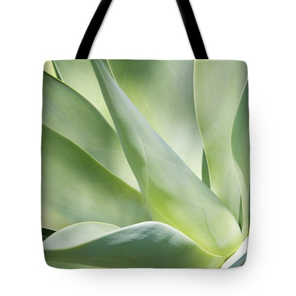 Agave Plant 2 Tote Bag