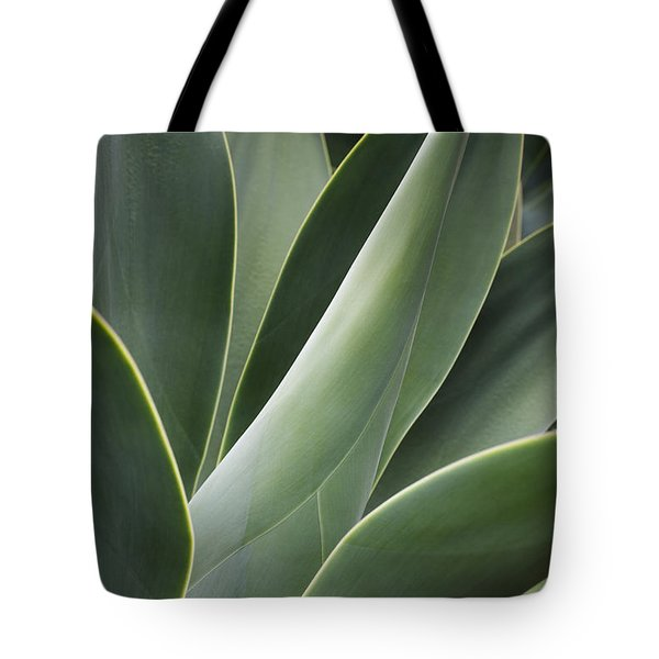 Agave Plant Tote Bag