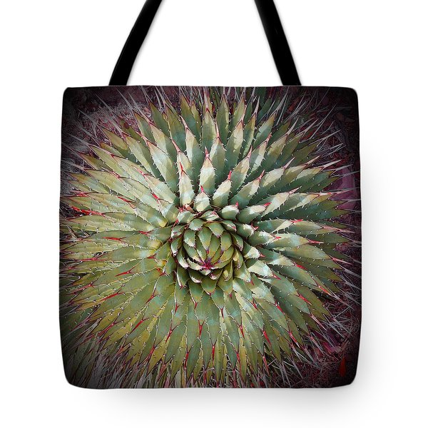 Agave Spikes Tote Bag by Alan Socolik