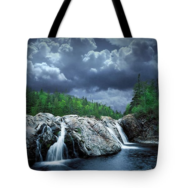 Aguasabon River Mouth Tote Bag by Randall Nyhof