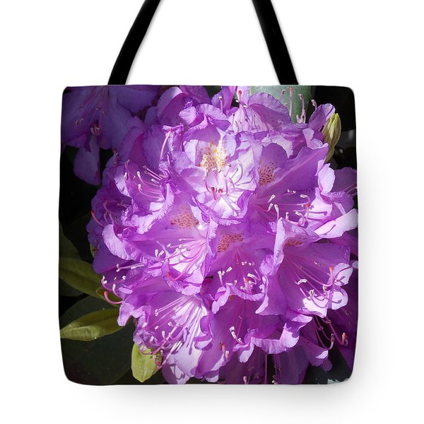 Ah Rhododendron Tote Bag