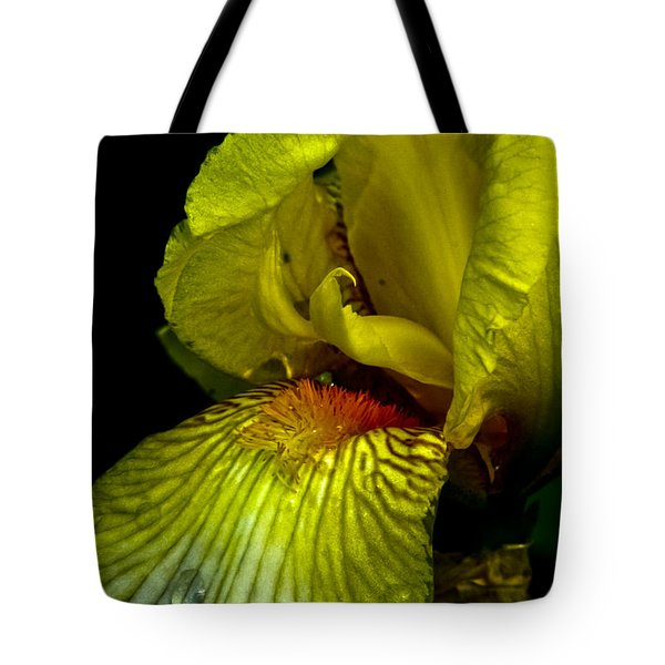 Tote Bag featuring the photograph Aieris by Joel Loftus