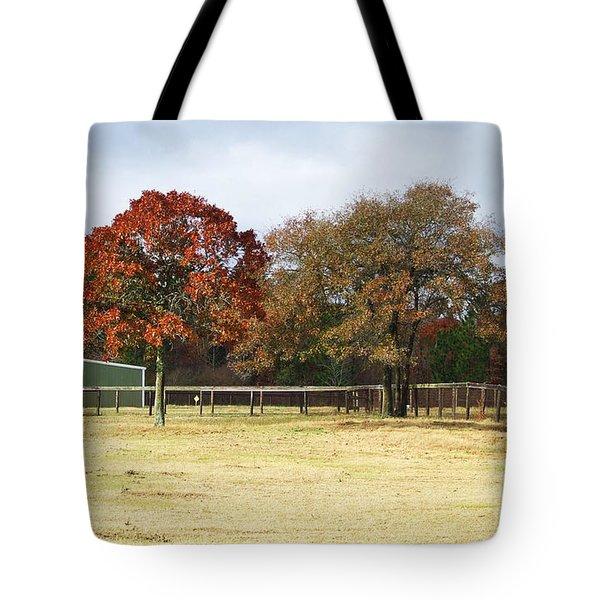 Aiken Tote Bag by Andrea Anderegg