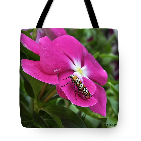 Tote Bag featuring the photograph Ailanthus Webworm Moth Visiting My Garden by Verana Stark